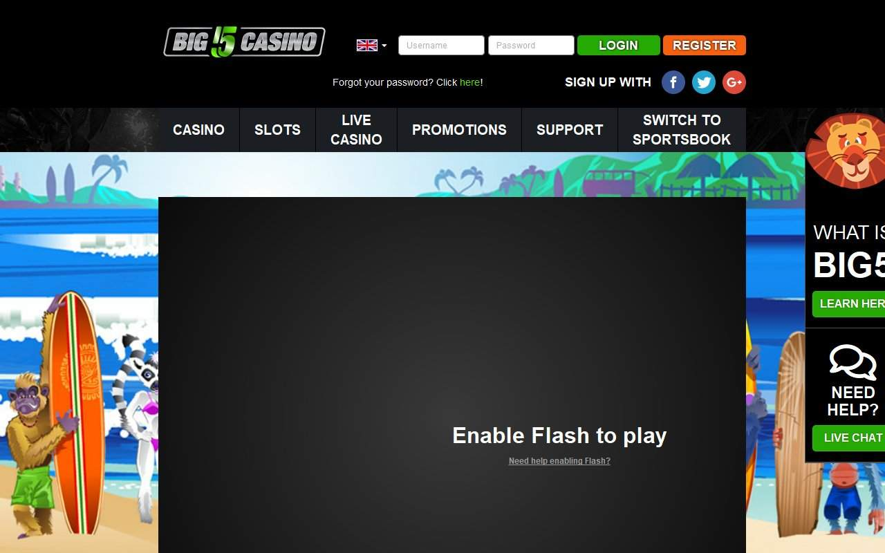 Gallery - Big 5 Casino Review
