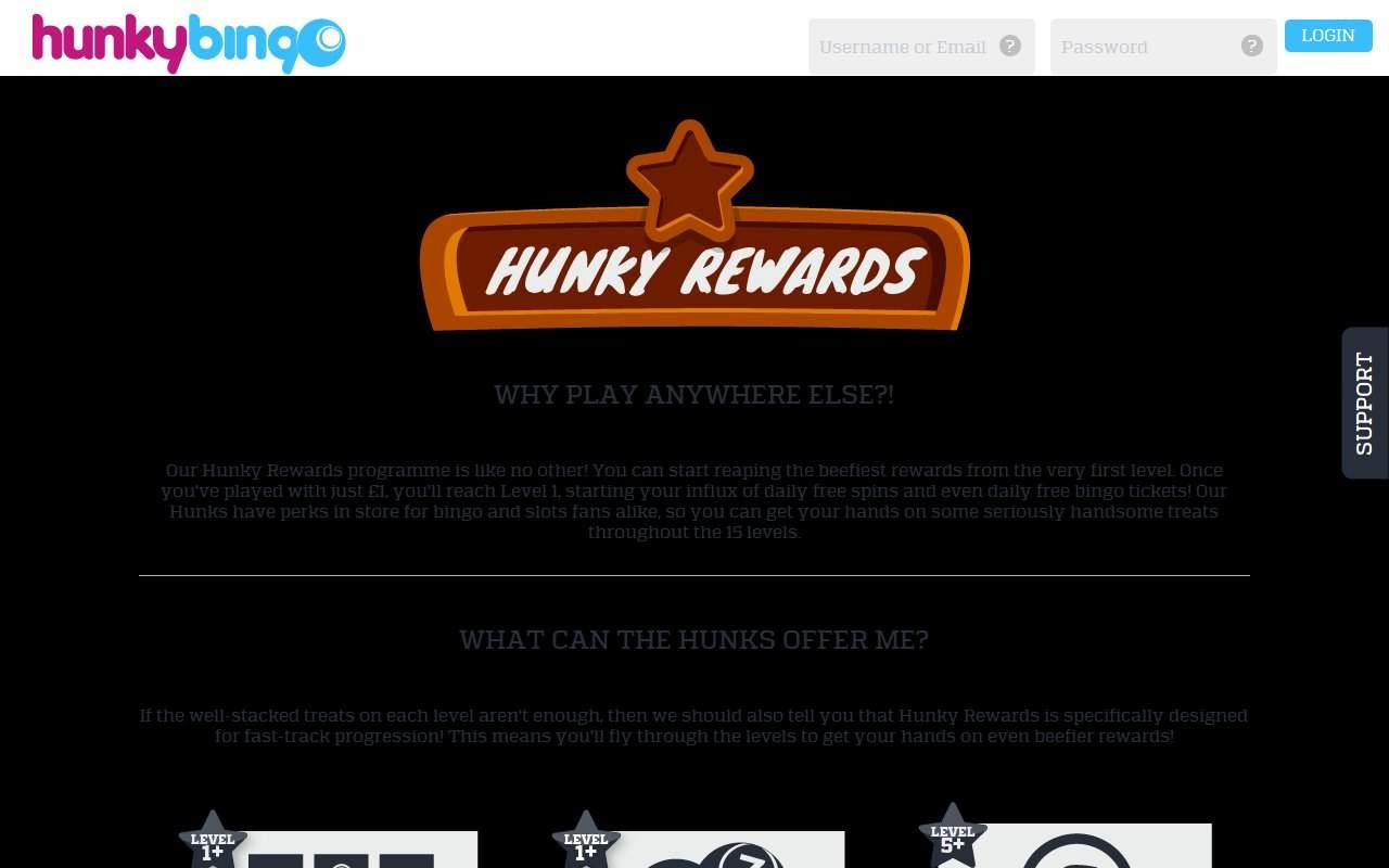Gallery - HunkyBingo.com Review