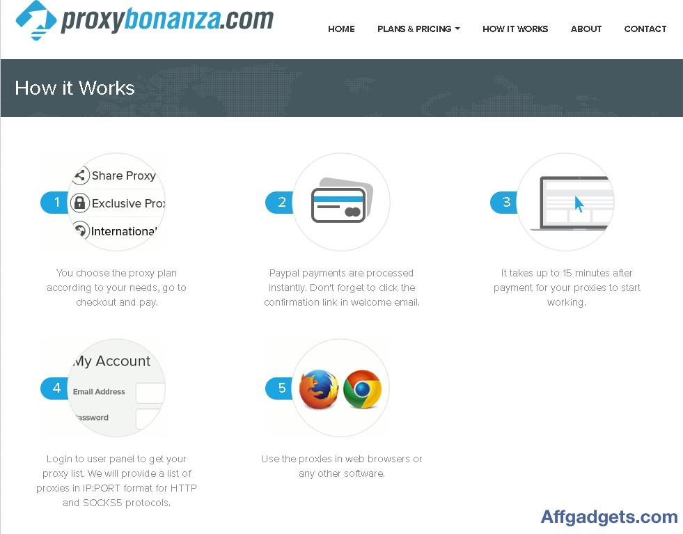 Gallery - Proxy Bonanza Review