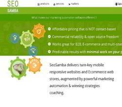 Homepage - SEO Samba Review