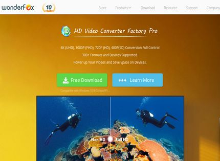 Homepage - WonderFox Video Watermark Review